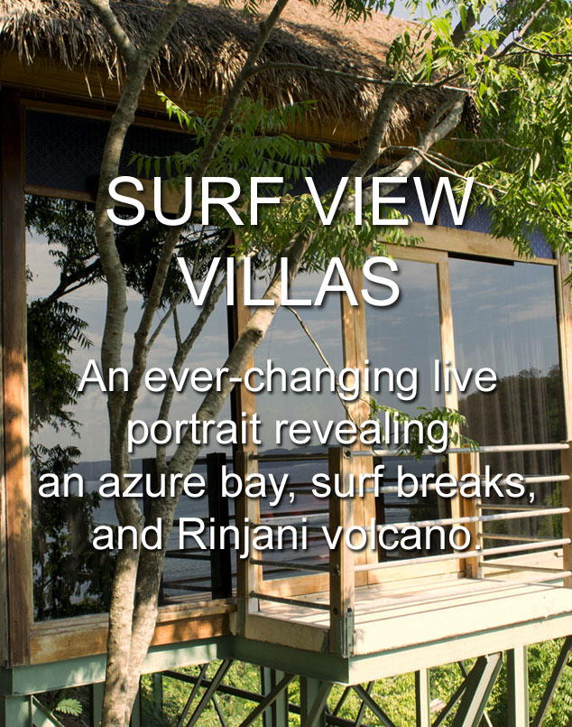 Surf View Villas